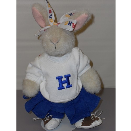 Hoppy, Cheerleading